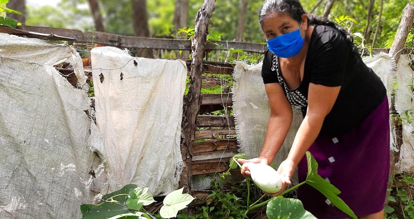 Doña Francisca Ruíz muestra parte de lo que cosecha en su huerto. Foto: Famnuel Úbeda/Radio ABC Stereo