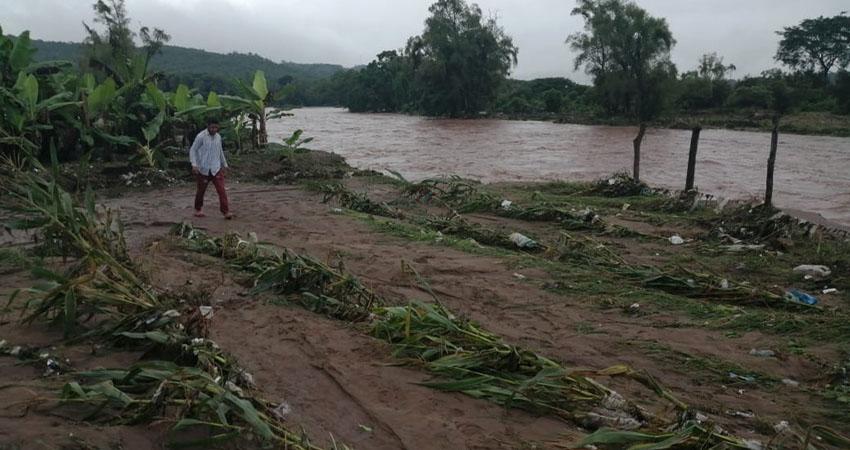 El desbordamiento de ríos y deslaves de montañas ponen en peligro la producción de 500 mil quintales de granos de frijol.